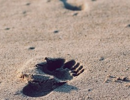 10 צעדים לבניית דף נחיתה אפקטיבי